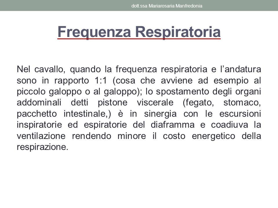 Frequenza Respiratoria Nel cavallo, quando la frequenza respiratoria e landatura sono in rapporto 1:1 (cosa che avviene ad esempio al piccolo galoppo