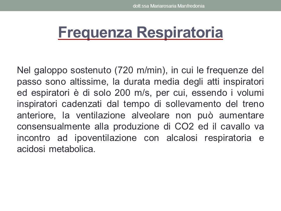 Frequenza Respiratoria Nel galoppo sostenuto (720 m/min), in cui le frequenze del passo sono altissime, la durata media degli atti inspiratori ed espi