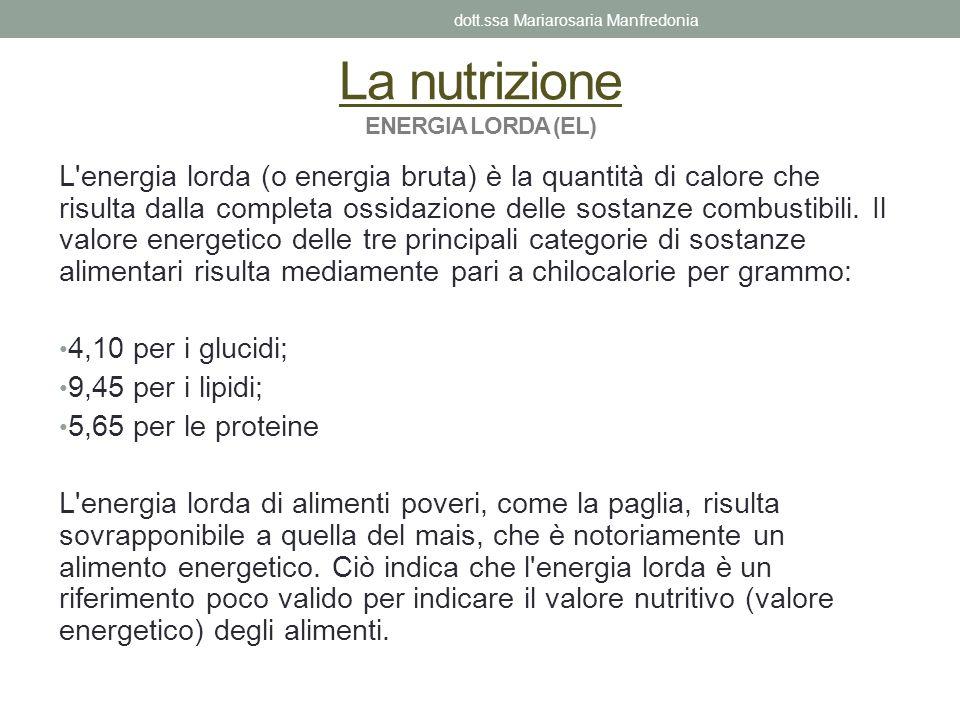 La nutrizione ENERGIA LORDA (EL) L'energia lorda (o energia bruta) è la quantità di calore che risulta dalla completa ossidazione delle sostanze combu