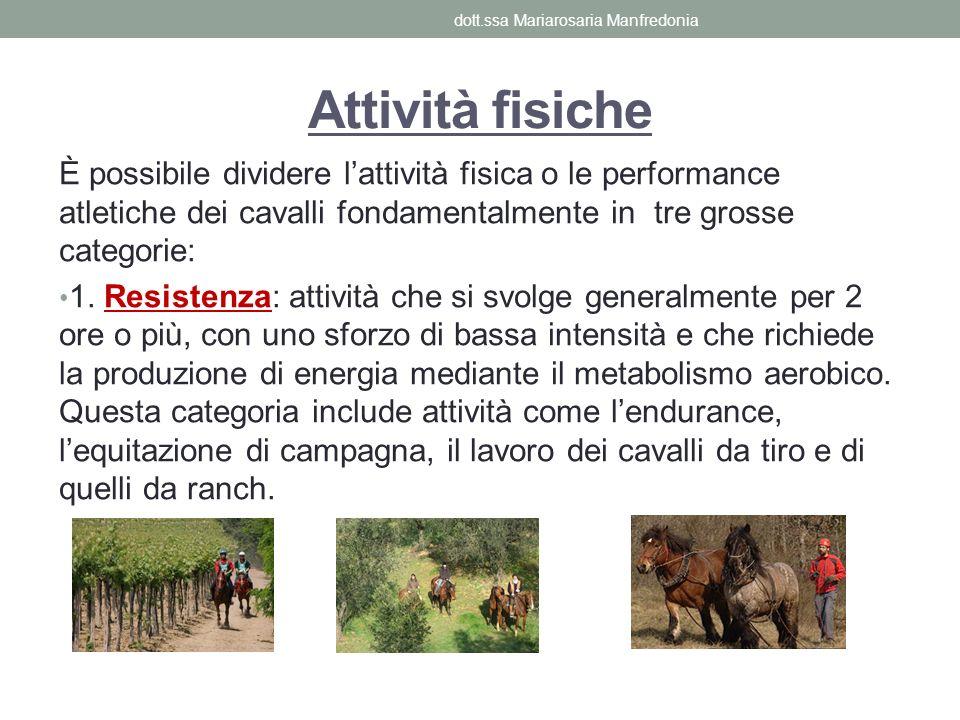 È possibile dividere lattività fisica o le performance atletiche dei cavalli fondamentalmente in tre grosse categorie: 1. Resistenza: attività che si