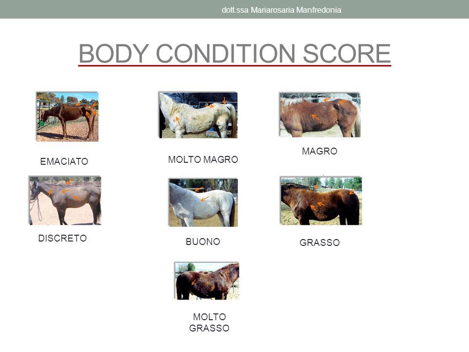 BODY CONDITION SCORE EMACIATO MOLTO MAGRO MAGRO DISCRETO BUONO GRASSO MOLTO GRASSO dott.ssa Mariarosaria Manfredonia