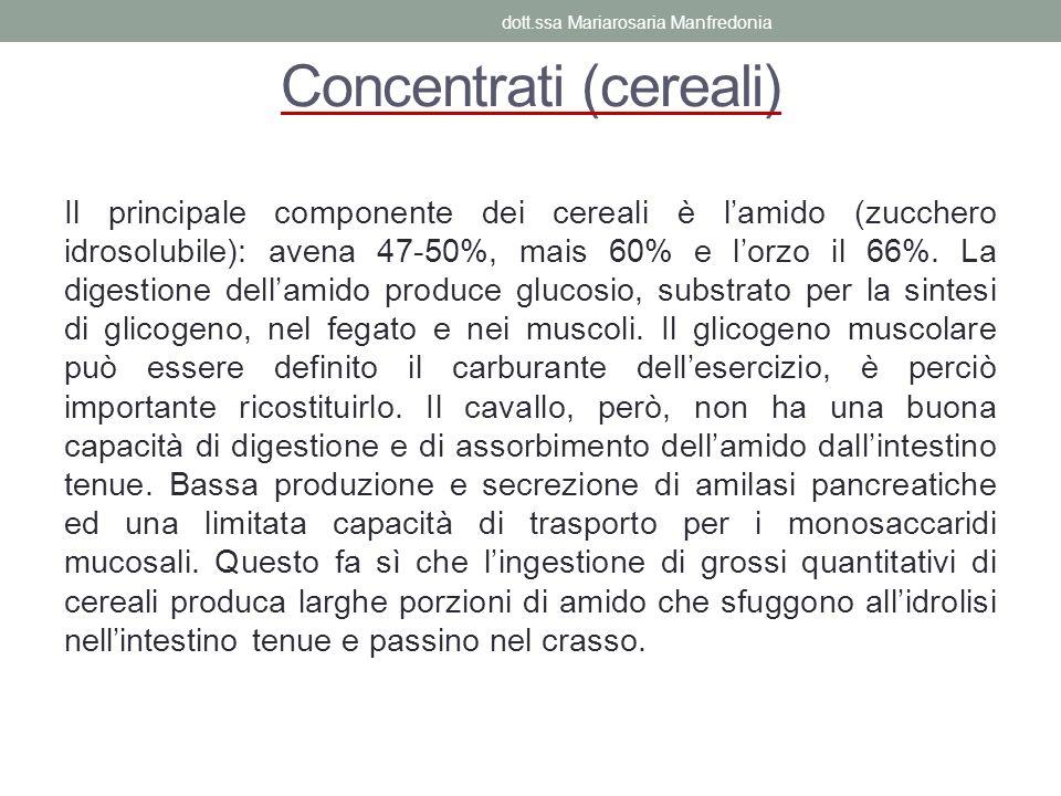Concentrati (cereali) Il principale componente dei cereali è lamido (zucchero idrosolubile): avena 47-50%, mais 60% e lorzo il 66%. La digestione dell