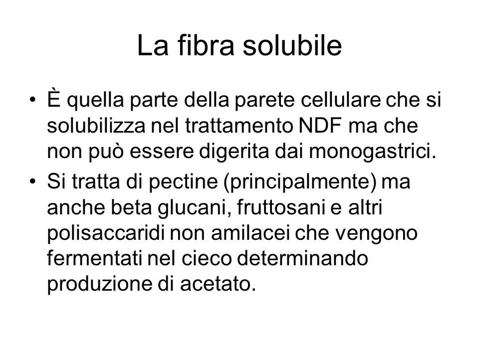 La fibra solubile È quella parte della parete cellulare che si solubilizza nel trattamento NDF ma che non può essere digerita dai monogastrici. Si tra