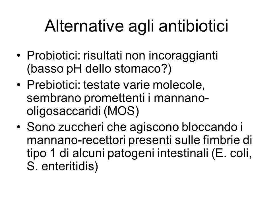 Alternative agli antibiotici Probiotici: risultati non incoraggianti (basso pH dello stomaco?) Prebiotici: testate varie molecole, sembrano promettent