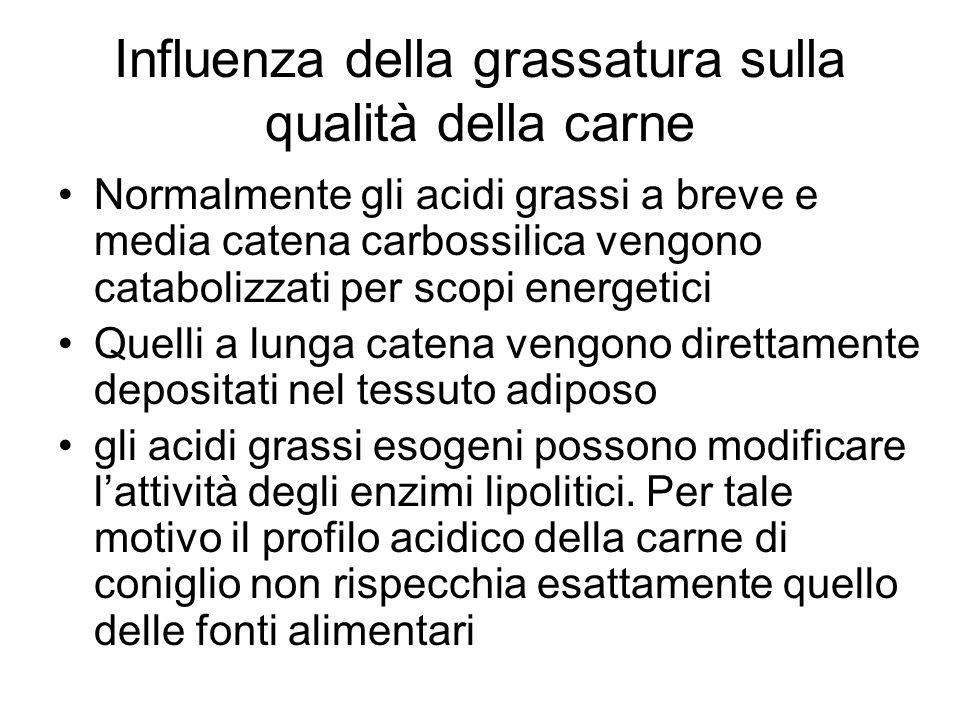 Influenza della grassatura sulla qualità della carne Normalmente gli acidi grassi a breve e media catena carbossilica vengono catabolizzati per scopi
