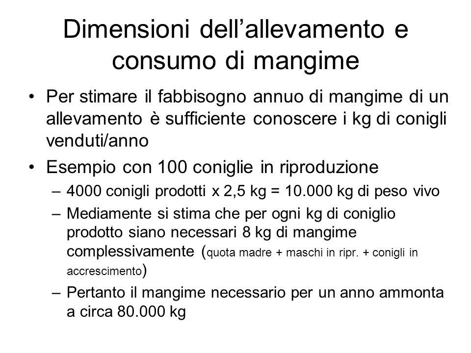 Dimensioni dellallevamento e consumo di mangime Per stimare il fabbisogno annuo di mangime di un allevamento è sufficiente conoscere i kg di conigli v