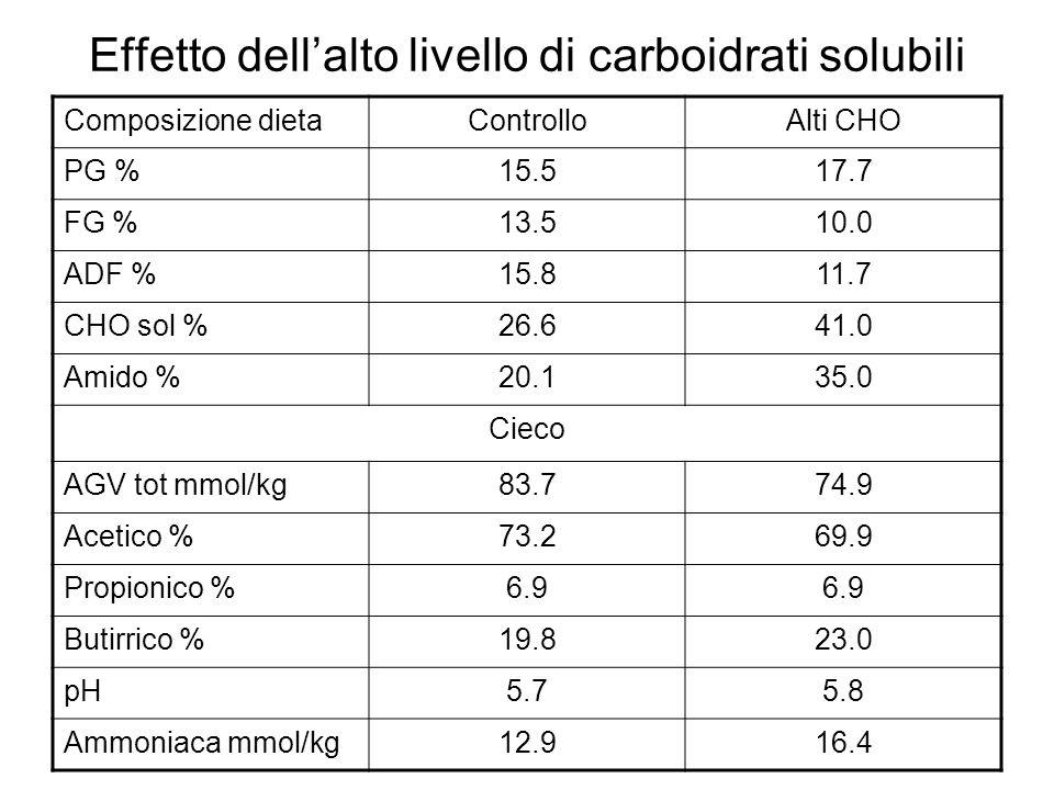 Effetto dellalto livello di carboidrati solubili Composizione dietaControlloAlti CHO PG %15.517.7 FG %13.510.0 ADF %15.811.7 CHO sol %26.641.0 Amido %