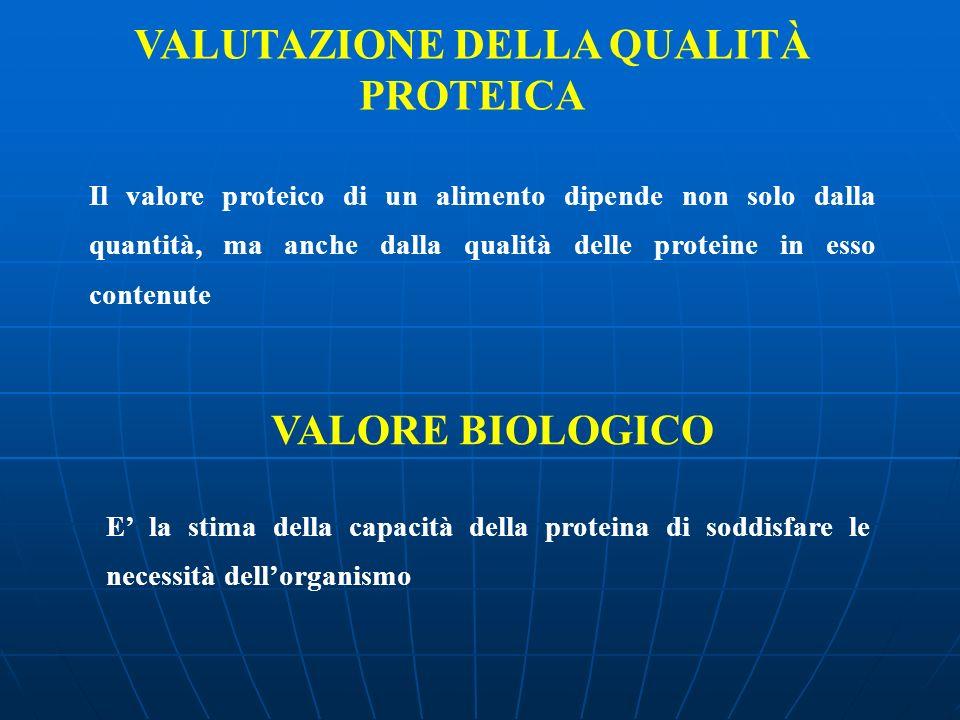 VALUTAZIONE DELLA QUALITÀ PROTEICA Il valore proteico di un alimento dipende non solo dalla quantità, ma anche dalla qualità delle proteine in esso co