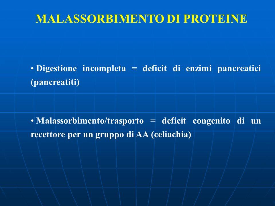 MALASSORBIMENTO DI PROTEINE Digestione incompleta = deficit di enzimi pancreatici (pancreatiti) Malassorbimento/trasporto = deficit congenito di un re