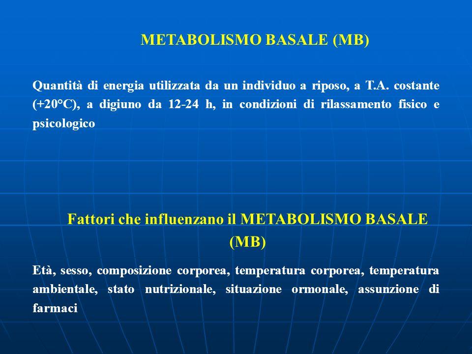 METABOLISMO BASALE (MB) Quantità di energia utilizzata da un individuo a riposo, a T.A. costante (+20°C), a digiuno da 12-24 h, in condizioni di rilas