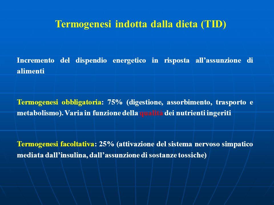 Termogenesi indotta dalla dieta (TID) Incremento del dispendio energetico in risposta allassunzione di alimenti Termogenesi obbligatoria: 75% (digesti