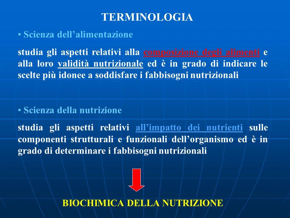 TERMINOLOGIA Scienza dellalimentazione studia gli aspetti relativi alla composizione degli alimenti e alla loro validità nutrizionale ed è in grado di