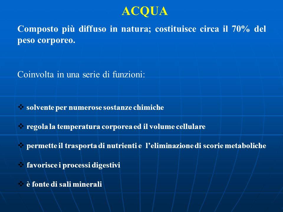 ACQUA Composto più diffuso in natura; costituisce circa il 70% del peso corporeo. Coinvolta in una serie di funzioni: solvente per numerose sostanze c