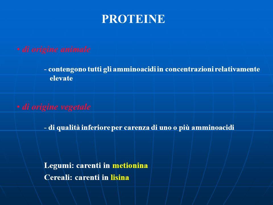 PROTEINE di origine animale - contengono tutti gli amminoacidi in concentrazioni relativamente elevate di origine vegetale - di qualità inferiore per