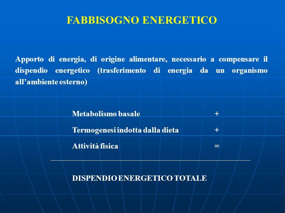 FABBISOGNO ENERGETICO Apporto di energia, di origine alimentare, necessario a compensare il dispendio energetico (trasferimento di energia da un organ