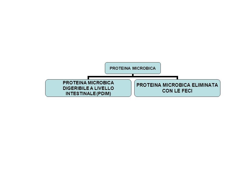 PROTEINA MICROBICA DIGERIBILE A LIVELLO INTESTINALE (PDIM) PROTEINA MICROBICA ELIMINATA CON LE FECI