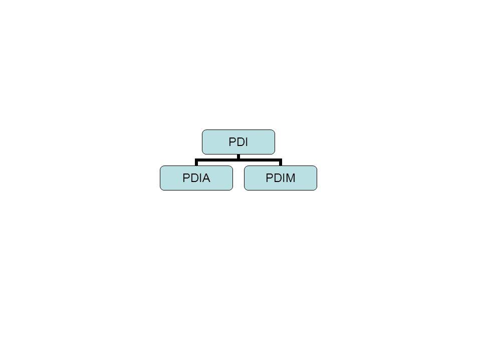 PDI PDIAPDIM