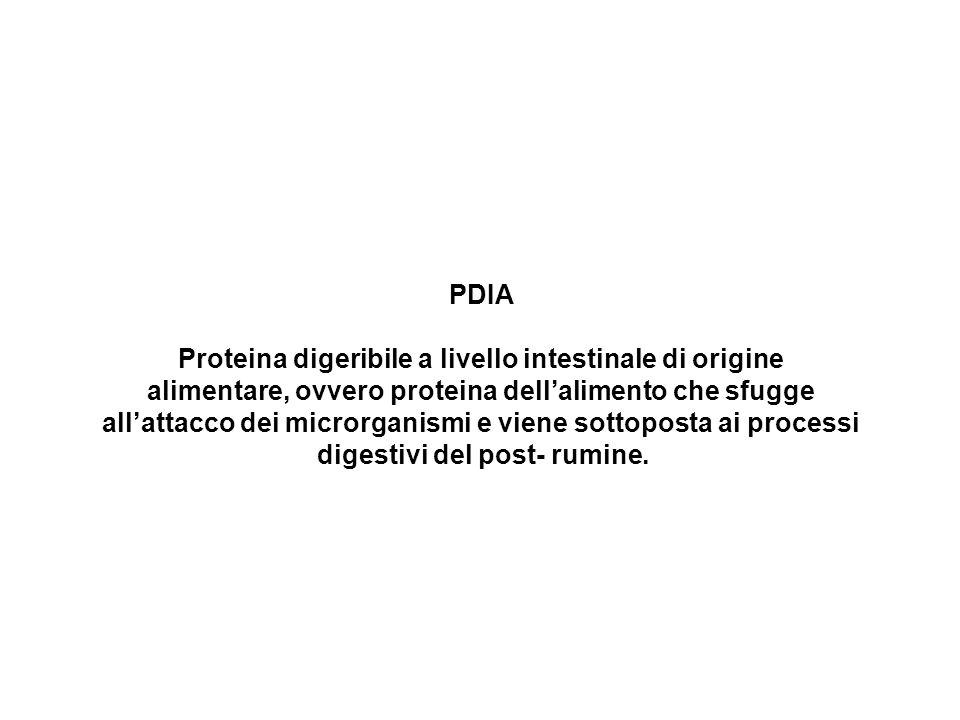 PDIA Proteina digeribile a livello intestinale di origine alimentare, ovvero proteina dellalimento che sfugge allattacco dei microrganismi e viene sot