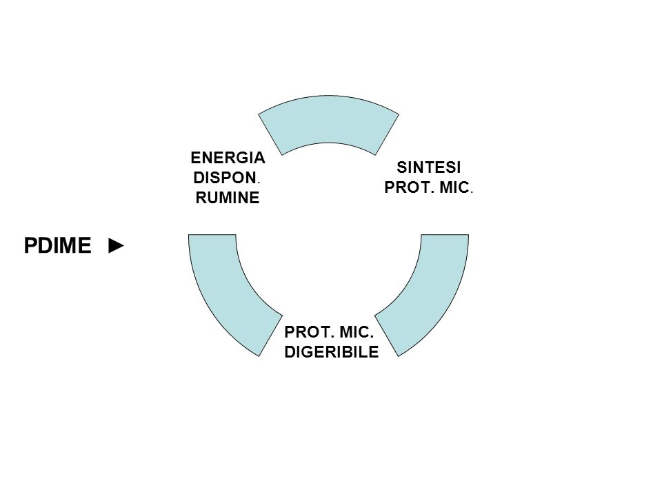 PDIME SINTESI PROT. MIC. DIGERIBILE ENERGIA DISPON. RUMINE