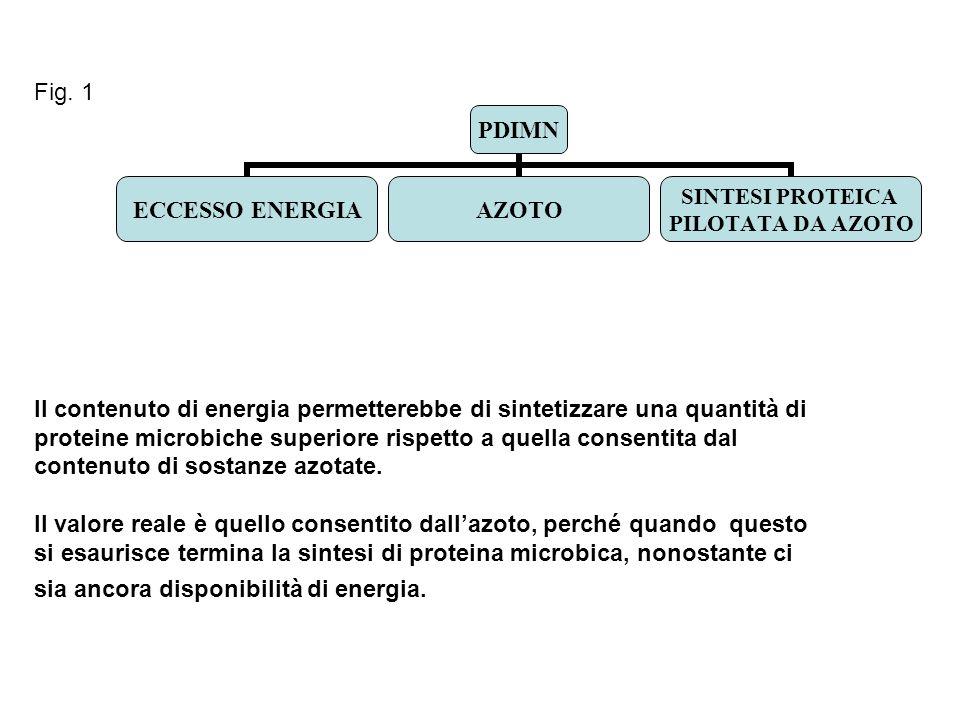 Fig. 1 Il contenuto di energia permetterebbe di sintetizzare una quantità di proteine microbiche superiore rispetto a quella consentita dal contenuto
