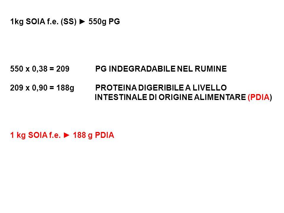 1kg SOIA f.e. (SS) 550g PG 550 x 0,38 = 209 PG INDEGRADABILE NEL RUMINE 209 x 0,90 = 188g PROTEINA DIGERIBILE A LIVELLO INTESTINALE DI ORIGINE ALIMENT