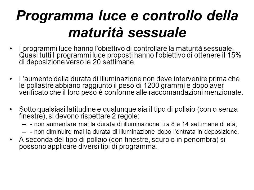 Programma luce e controllo della maturità sessuale I programmi luce hanno l obiettivo di controllare la maturità sessuale.