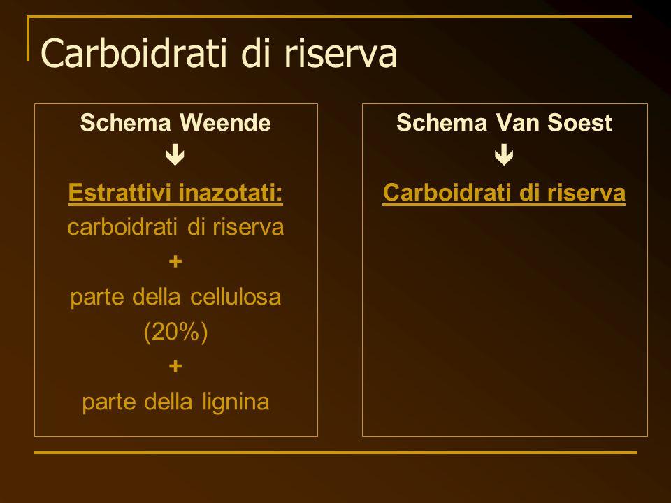 Carboidrati di riserva Schema Weende Estrattivi inazotati: carboidrati di riserva + parte della cellulosa (20%) + parte della lignina Schema Van Soest