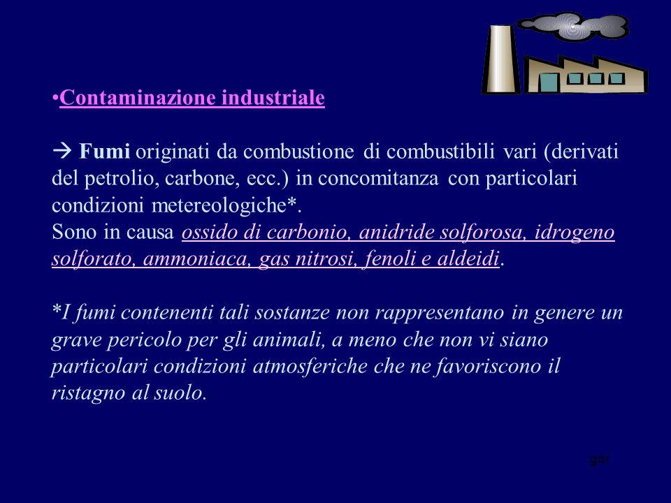 gdr Contaminazione industriale Fumi originati da combustione di combustibili vari (derivati del petrolio, carbone, ecc.) in concomitanza con particolari condizioni metereologiche*.