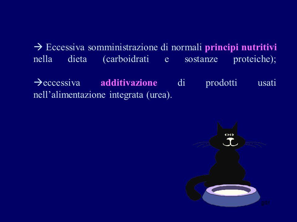 gdr Eccessiva somministrazione di normali principi nutritivi nella dieta (carboidrati e sostanze proteiche); eccessiva additivazione di prodotti usati nellalimentazione integrata (urea).