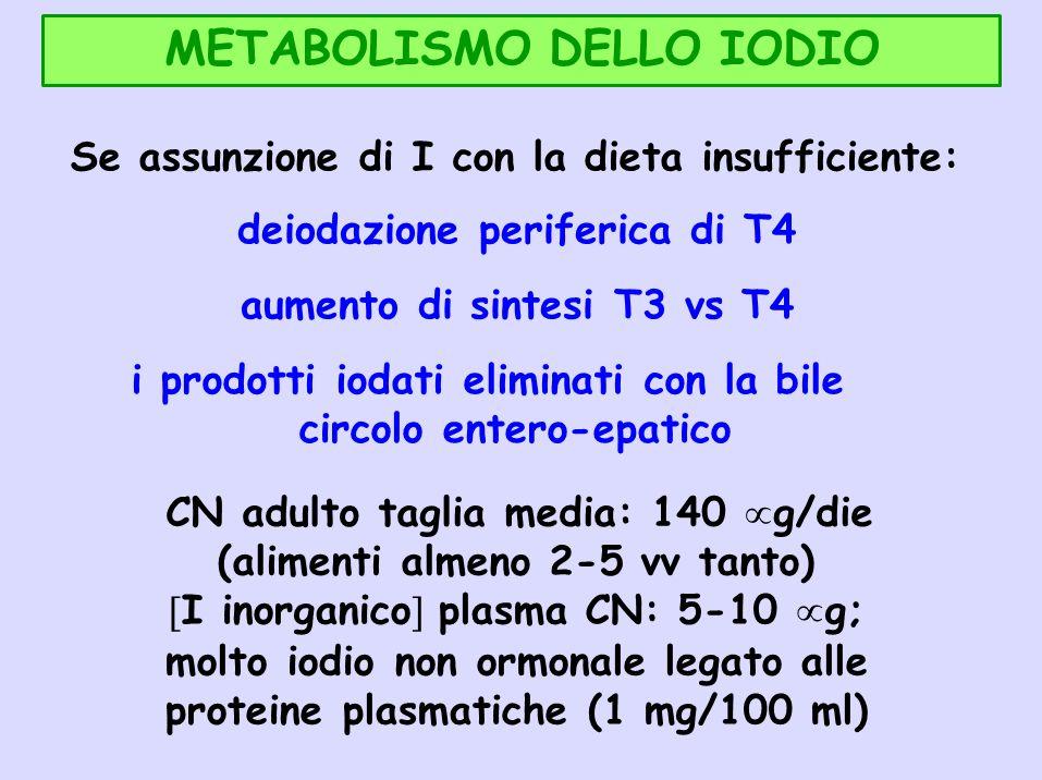 METABOLISMO DELLO IODIO Se assunzione di I con la dieta insufficiente: deiodazione periferica di T4 aumento di sintesi T3 vs T4 i prodotti iodati elim
