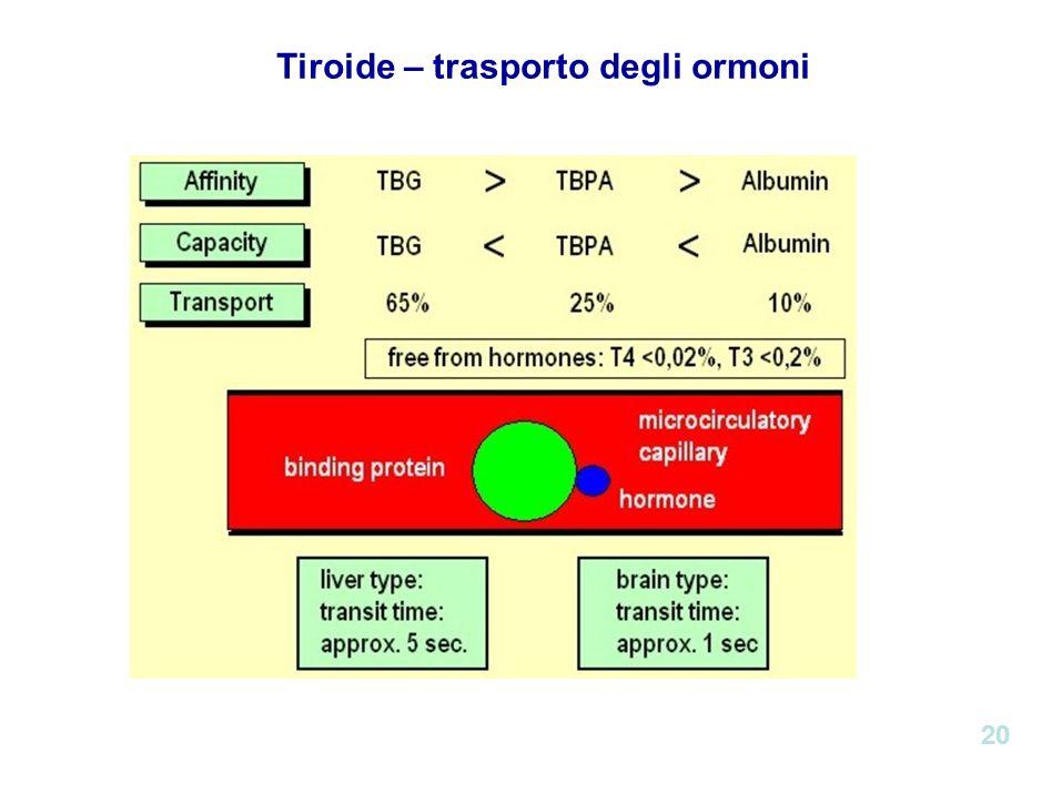 Tiroide – trasporto degli ormoni 20