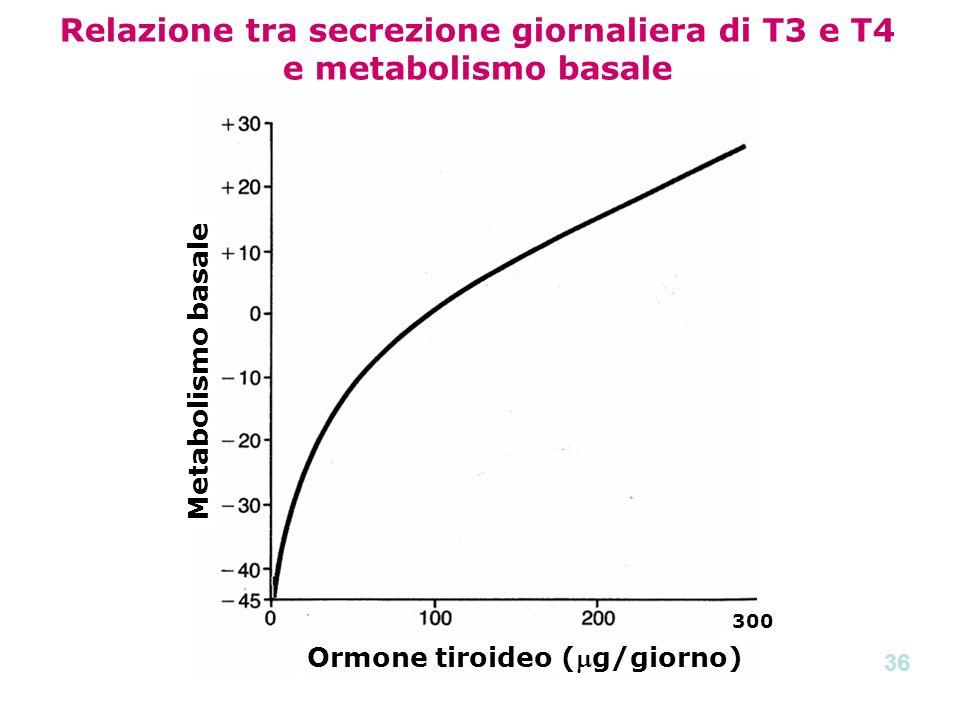 Metabolismo basale Ormone tiroideo (g/giorno) 300 Relazione tra secrezione giornaliera di T3 e T4 e metabolismo basale 36