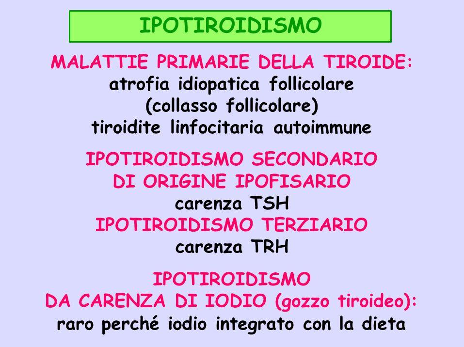IPOTIROIDISMO MALATTIE PRIMARIE DELLA TIROIDE: atrofia idiopatica follicolare (collasso follicolare) tiroidite linfocitaria autoimmune IPOTIROIDISMO S
