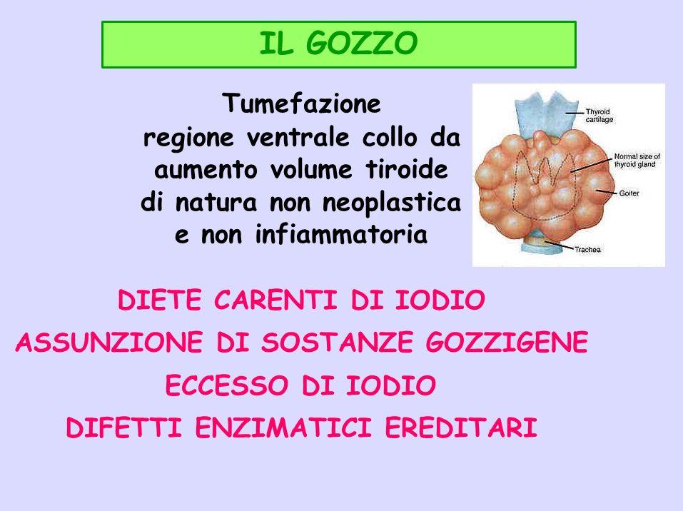 IL GOZZO Tumefazione regione ventrale collo da aumento volume tiroide di natura non neoplastica e non infiammatoria DIETE CARENTI DI IODIO ASSUNZIONE