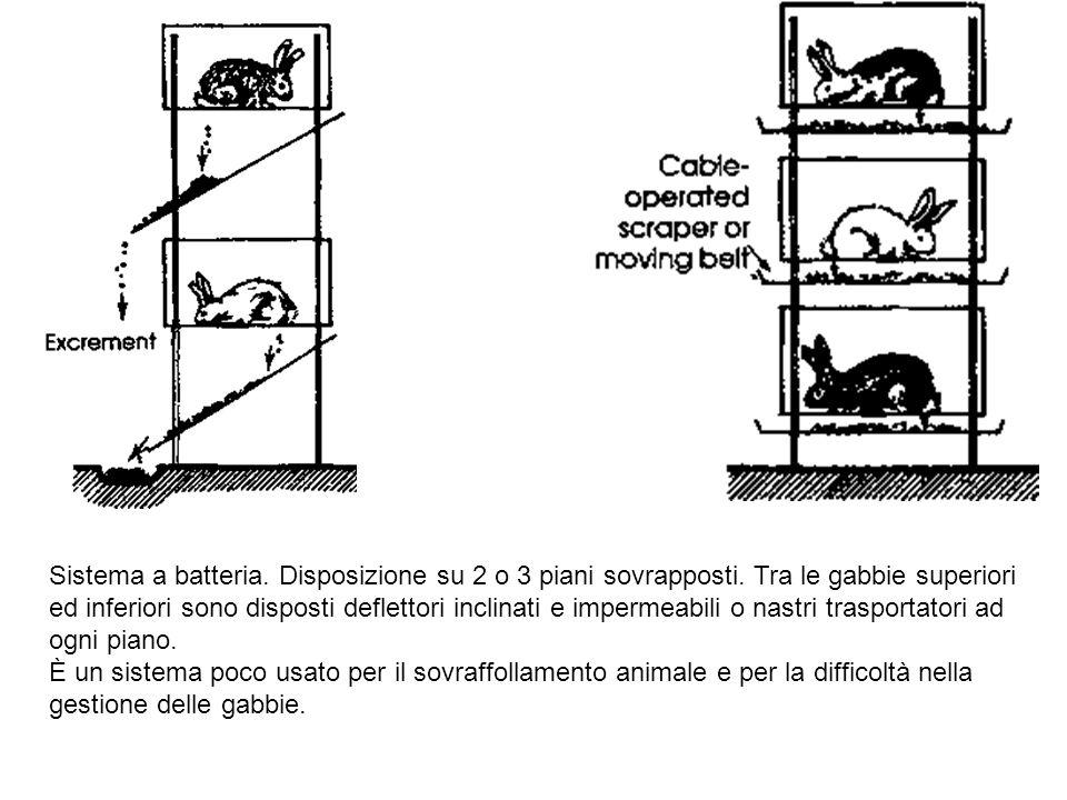 Sistema a batteria. Disposizione su 2 o 3 piani sovrapposti. Tra le gabbie superiori ed inferiori sono disposti deflettori inclinati e impermeabili o