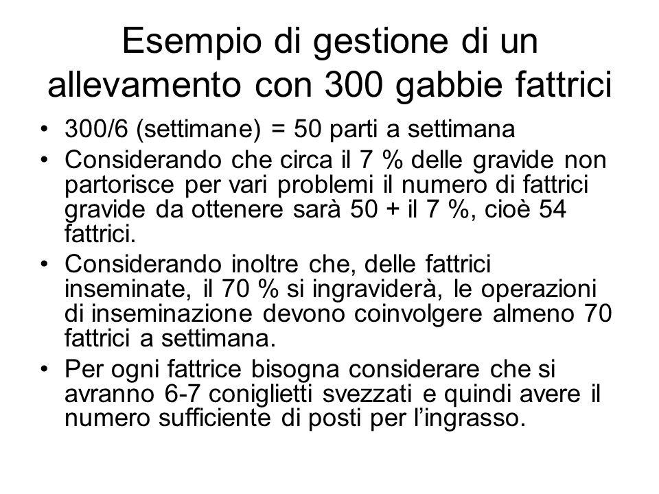 Esempio di gestione di un allevamento con 300 gabbie fattrici 300/6 (settimane) = 50 parti a settimana Considerando che circa il 7 % delle gravide non