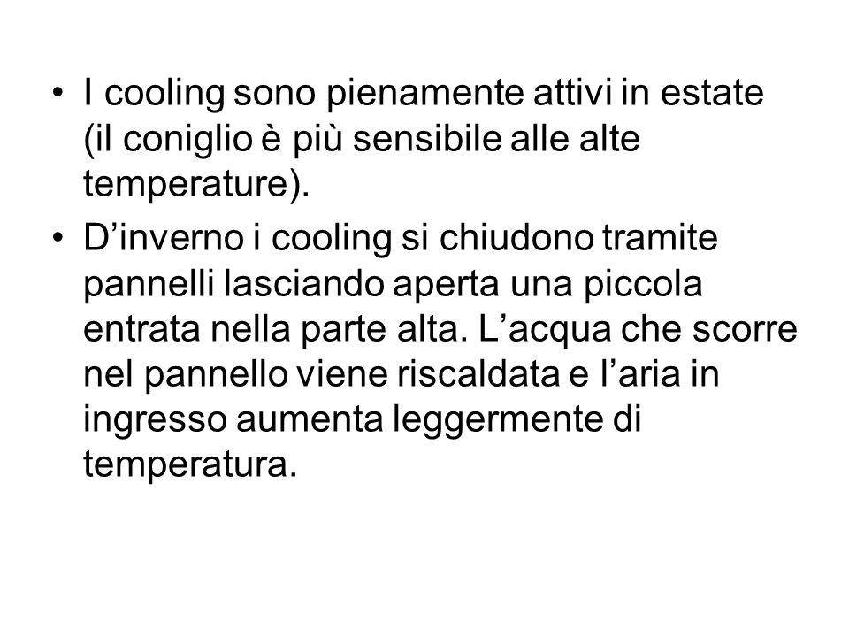 I cooling sono pienamente attivi in estate (il coniglio è più sensibile alle alte temperature). Dinverno i cooling si chiudono tramite pannelli lascia