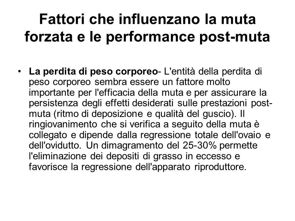 Fattori che influenzano la muta forzata e le performance post-muta La perdita di peso corporeo- L'entità della perdita di peso corporeo sembra essere