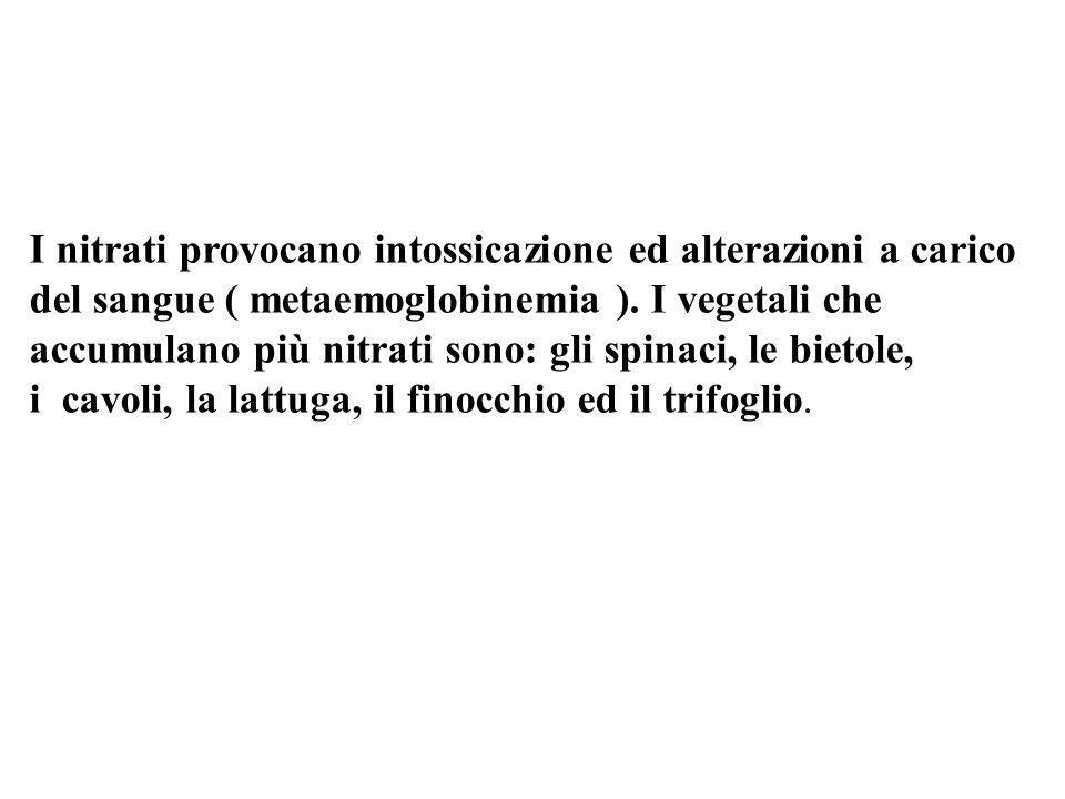 I nitrati provocano intossicazione ed alterazioni a carico del sangue ( metaemoglobinemia ).