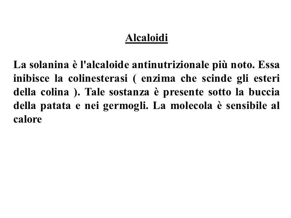 Alcaloidi La solanina è l alcaloide antinutrizionale più noto.