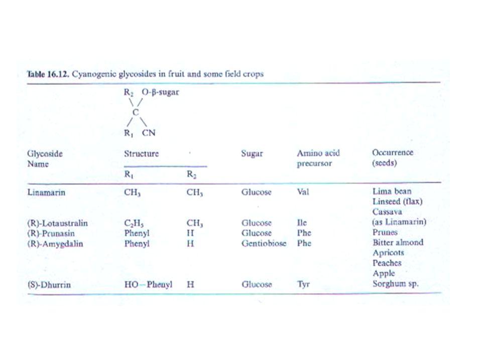 Alcaloidi La solanina è l'alcaloide antinutrizionale più noto. Essa inibisce la colinesterasi ( enzima che scinde gli esteri della colina ). Tale sost