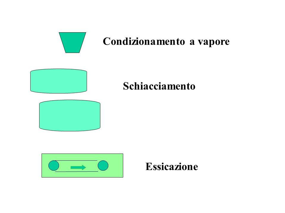 Condizionamento a vapore Schiacciamento Essicazione