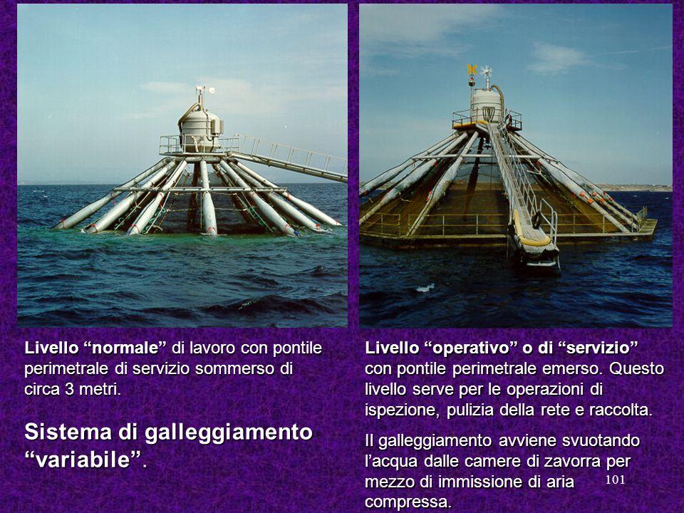 101 Livello normale di lavoro con pontile perimetrale di servizio sommerso di circa 3 metri. Livello operativo o di servizio con pontile perimetrale e
