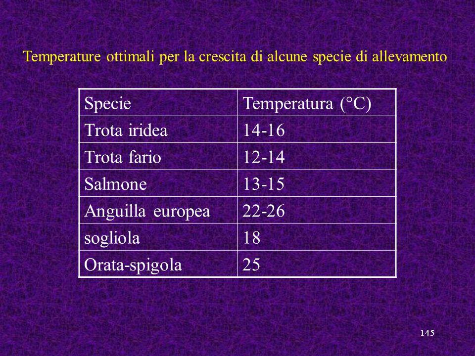 145 SpecieTemperatura (°C) Trota iridea14-16 Trota fario12-14 Salmone13-15 Anguilla europea22-26 sogliola18 Orata-spigola25 Temperature ottimali per l