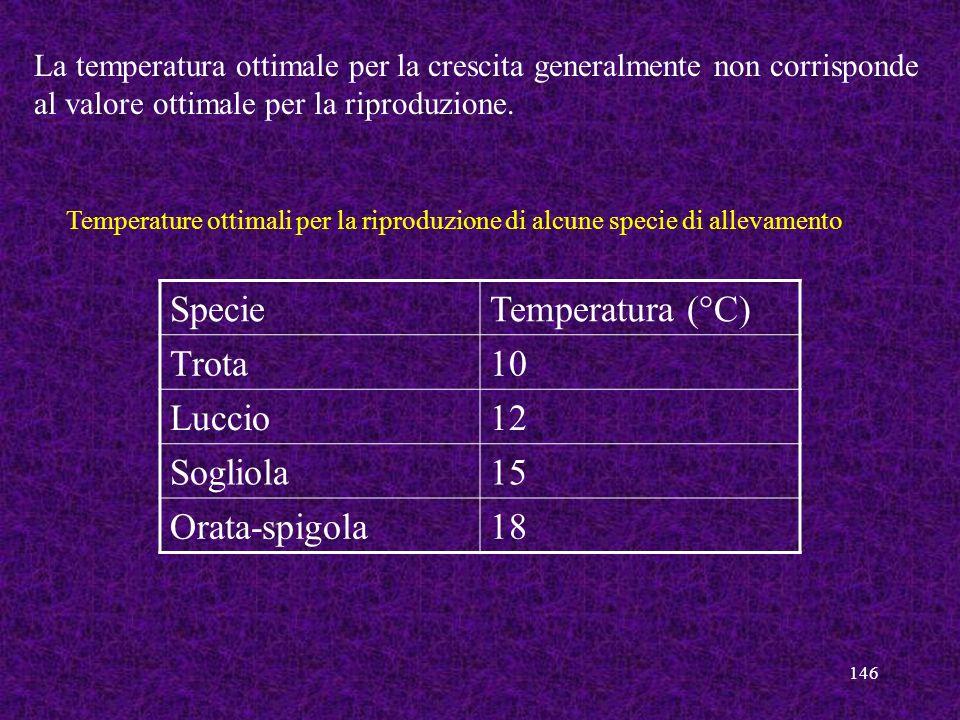 146 La temperatura ottimale per la crescita generalmente non corrisponde al valore ottimale per la riproduzione. SpecieTemperatura (°C) Trota10 Luccio
