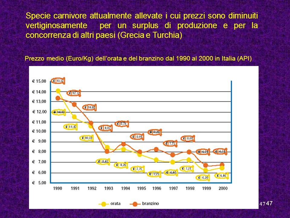 47 Prezzo medio (Euro/Kg) dellorata e del branzino dal 1990 al 2000 in Italia (API) Specie carnivore attualmente allevate i cui prezzi sono diminuiti