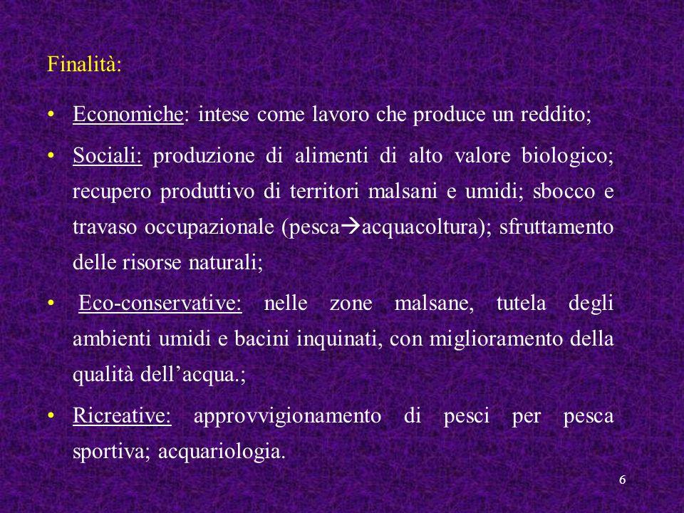 6 Economiche: intese come lavoro che produce un reddito; Sociali: produzione di alimenti di alto valore biologico; recupero produttivo di territori ma