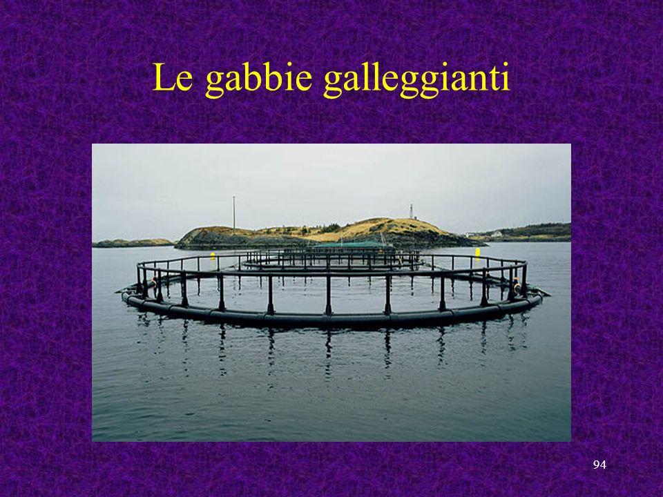 94 Le gabbie galleggianti