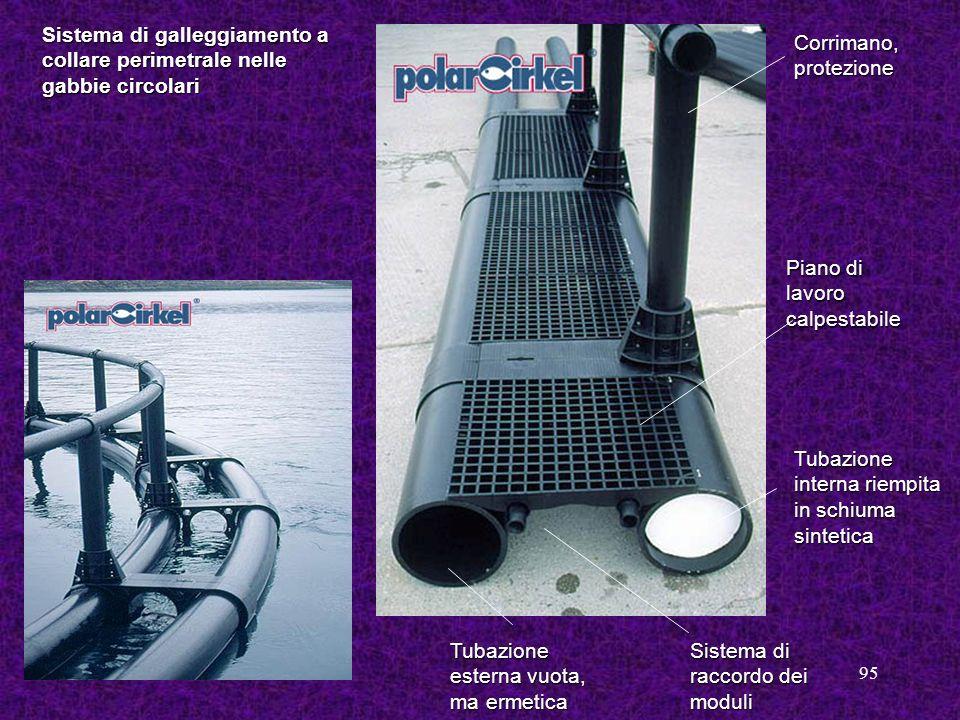 95 Sistema di galleggiamento a collare perimetrale nelle gabbie circolari Tubazione interna riempita in schiuma sintetica Tubazione esterna vuota, ma