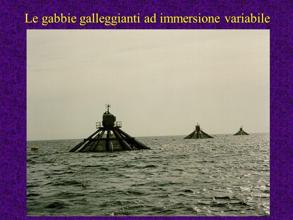 99 Le gabbie galleggianti ad immersione variabile